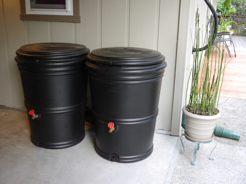 The smallest tanks we have, two 60 gallon barrels.