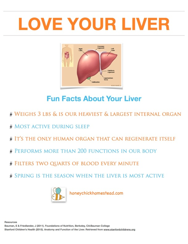 Love your liver part 1