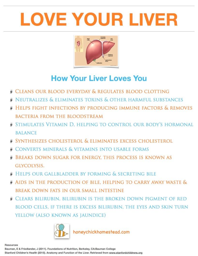 Love your liver part 2